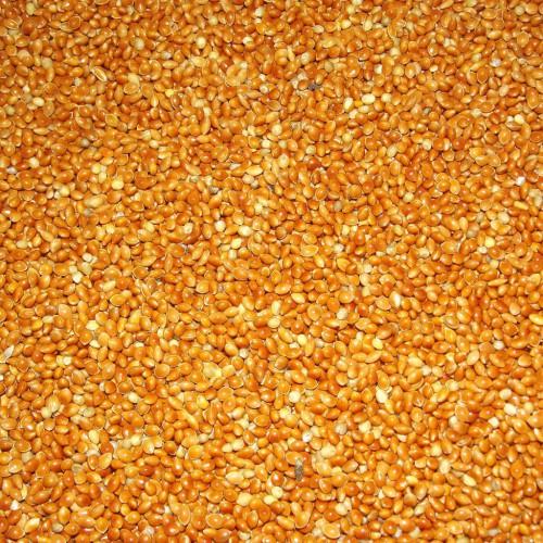 Millet Rouge au Kg