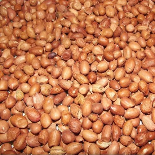 Arrachide (Cacahuète) au Kg